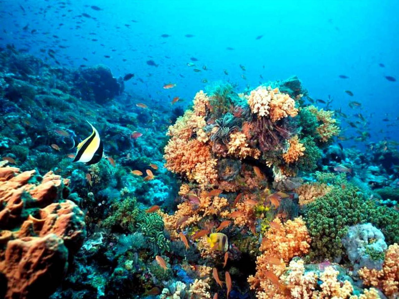 Riviera Maya – Lugar Histórico